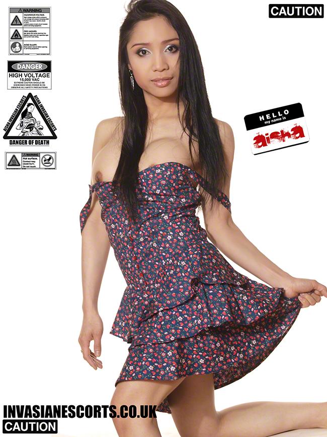Busty Aisha in summer dress